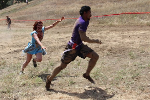 This Sydney Obstacle Course Literally Involves Running ...