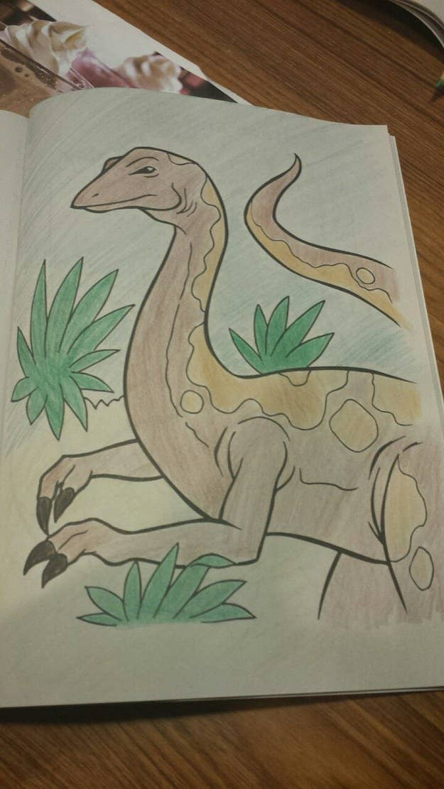 The Coloring Book Kind
