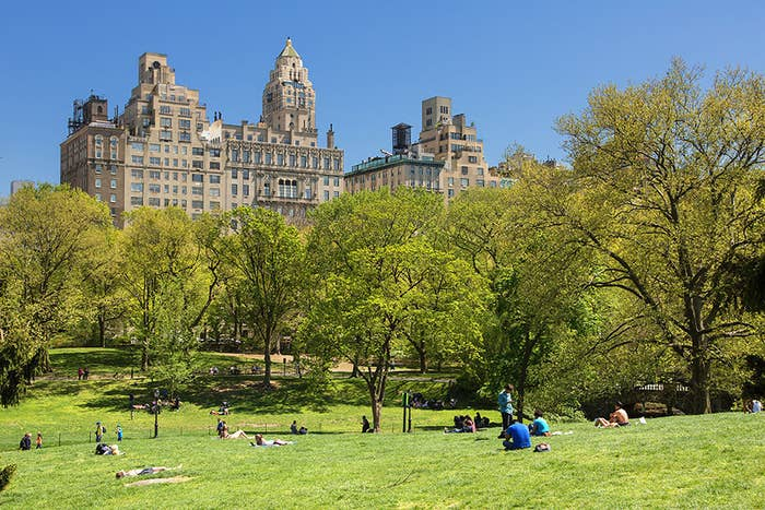 Central Park is the most visited urban park in the world and one of the most filmed locations in the world!