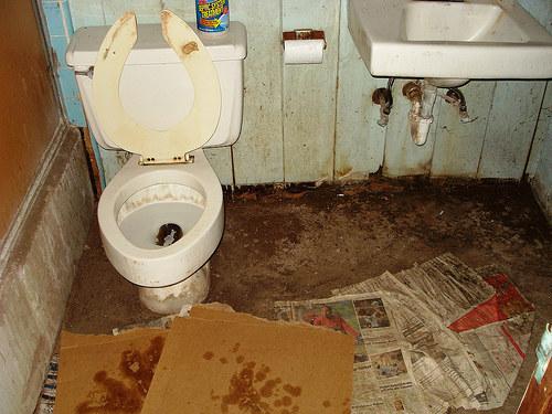 Любители грязных туалетов дамами панталончиках