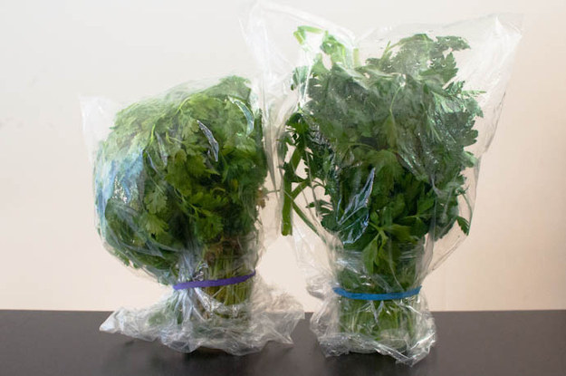 Or store delicate herbs in cups of water, cover them with plastic wrap, secure with a rubber band, and refrigerate.