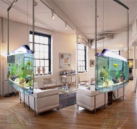 Kitchen Island Fish Tank 2. large fish bowl fish fishamazing. artsy balloon beautiful
