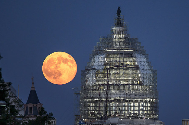 14 Out-Of-This-World Photos Of Friday's Blue Moon