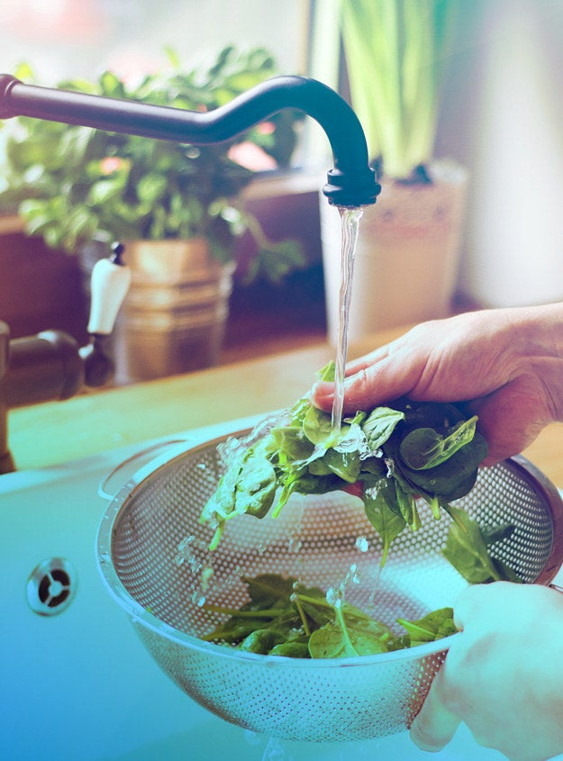 Place a shallow bucket in the sink to collect the water, then transfer that water to a watering can. You could even plant an herb garden in your kitchen window, then use your wastewater (plus light) to grow food for yourself! Be sure to check your plants to ensure they can handle the pH of dish soap water.