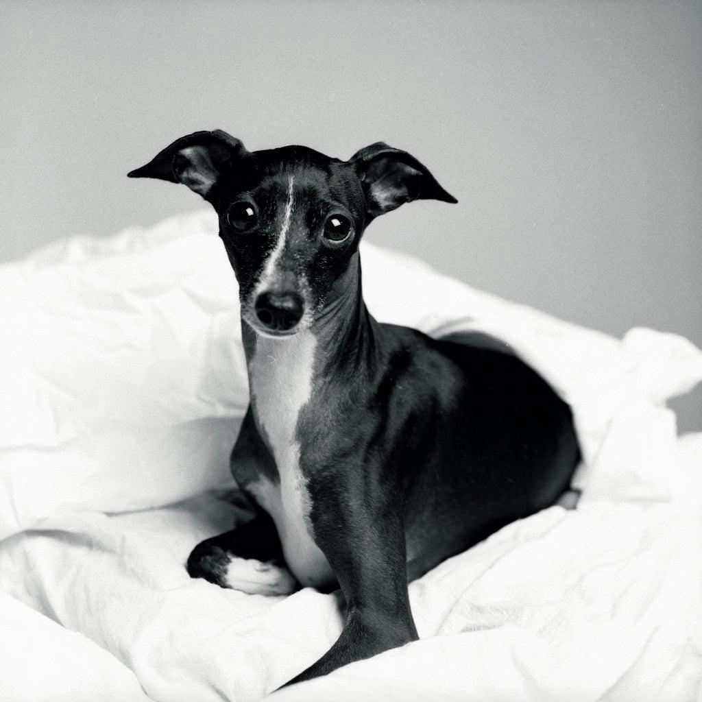 Audrey at three years