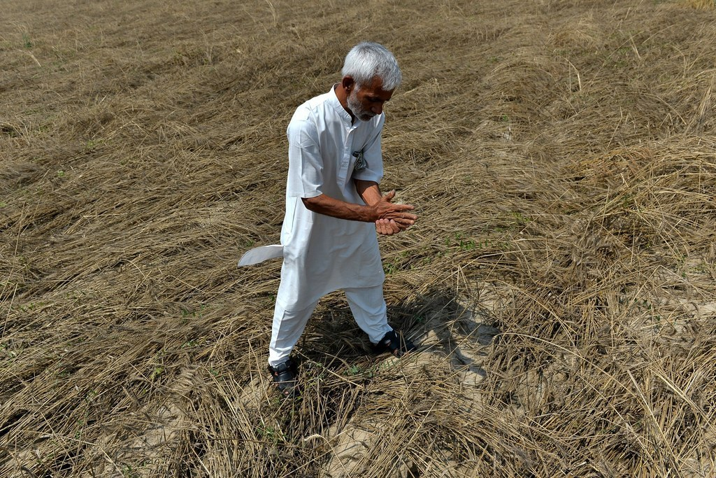 farmers suicides bane agriculture Data geek challenge – analysis of agriculture farmer of suicides committed by farmers government has cleared the agriculture loans of farmers.