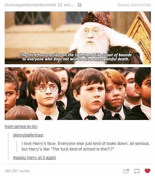 """What's The Funniest """"Harry Potter"""" Tumblr Post You've Seen?"""