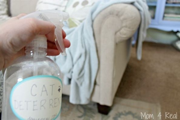 And Your Own Cat Deterrent, To Keep Them From Scratching And/or Jumping On  The Furniture.
