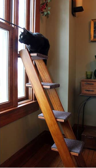 Find a ladder of your own and cover each step with scraps of carpeting, or purchase one here!