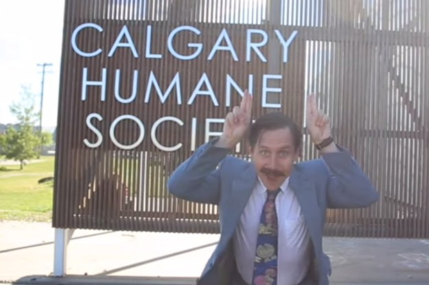 The Calgary Humane Society Made A Ridiculous Ad For