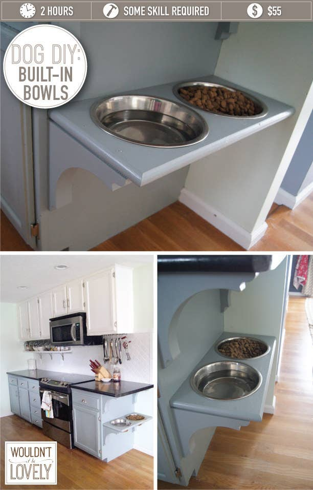 10 Ridiculously Easy DIY Pet Food Stand Projects| Pet Food Stand Projects, Pet Food Stand, DIY Pet Stand, Easy Pet Stand Projects, Projects for Pets, Pet Hacks, Tips and Tricks for Pet Owners, Popular Pin