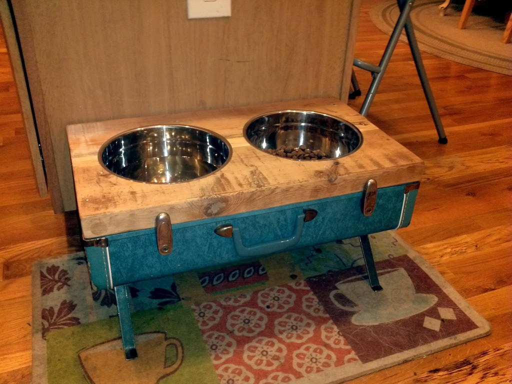 19 Brilliant DIY Projects For Pet Food Stations