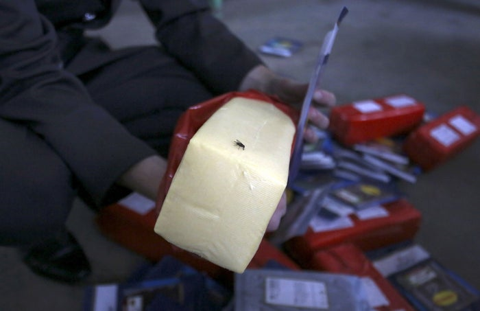 A fly sits on cheese, part of illegally imported food falling under restrictions in the territory of Pulkovo airport in St. Petersburg, Russia on August 6, 2015.
