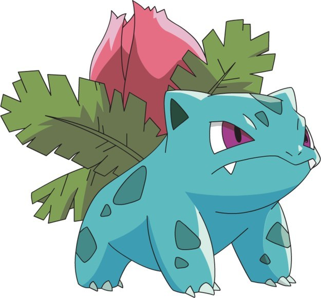 Do You Remember The Names Of These 16 Pokémon?