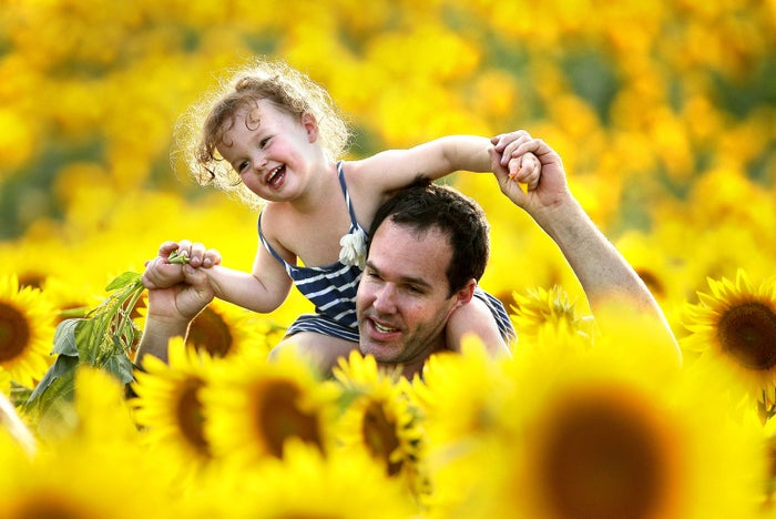 Rawly Stanhope walks with his daughter, Cambrin, through a sunflower field near Lawrence, Kansas. The 40-acre field, planted annually by the Grinter family, draws hundreds during the weeklong late summer blossoming of the flowers.