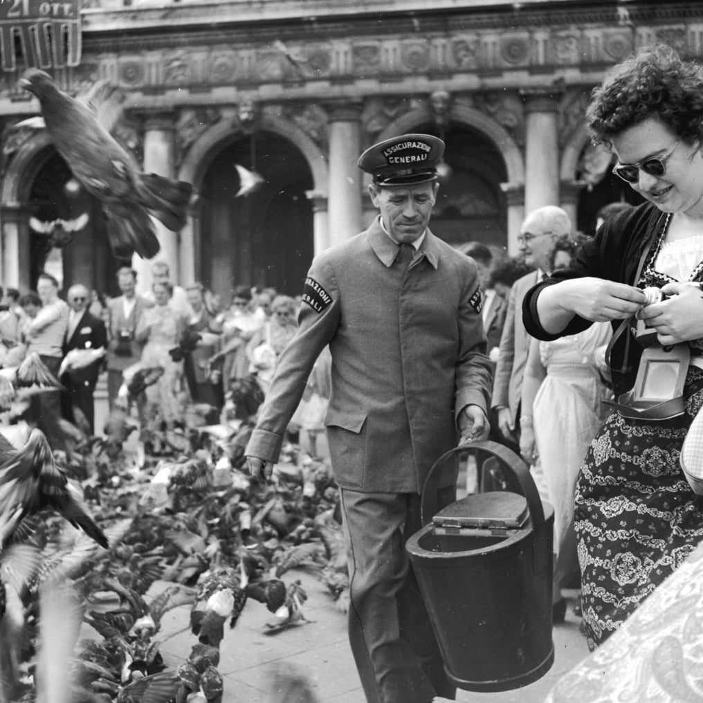 The bustle of tourists, pigeons, and public servants in Venice. Circa 1955.