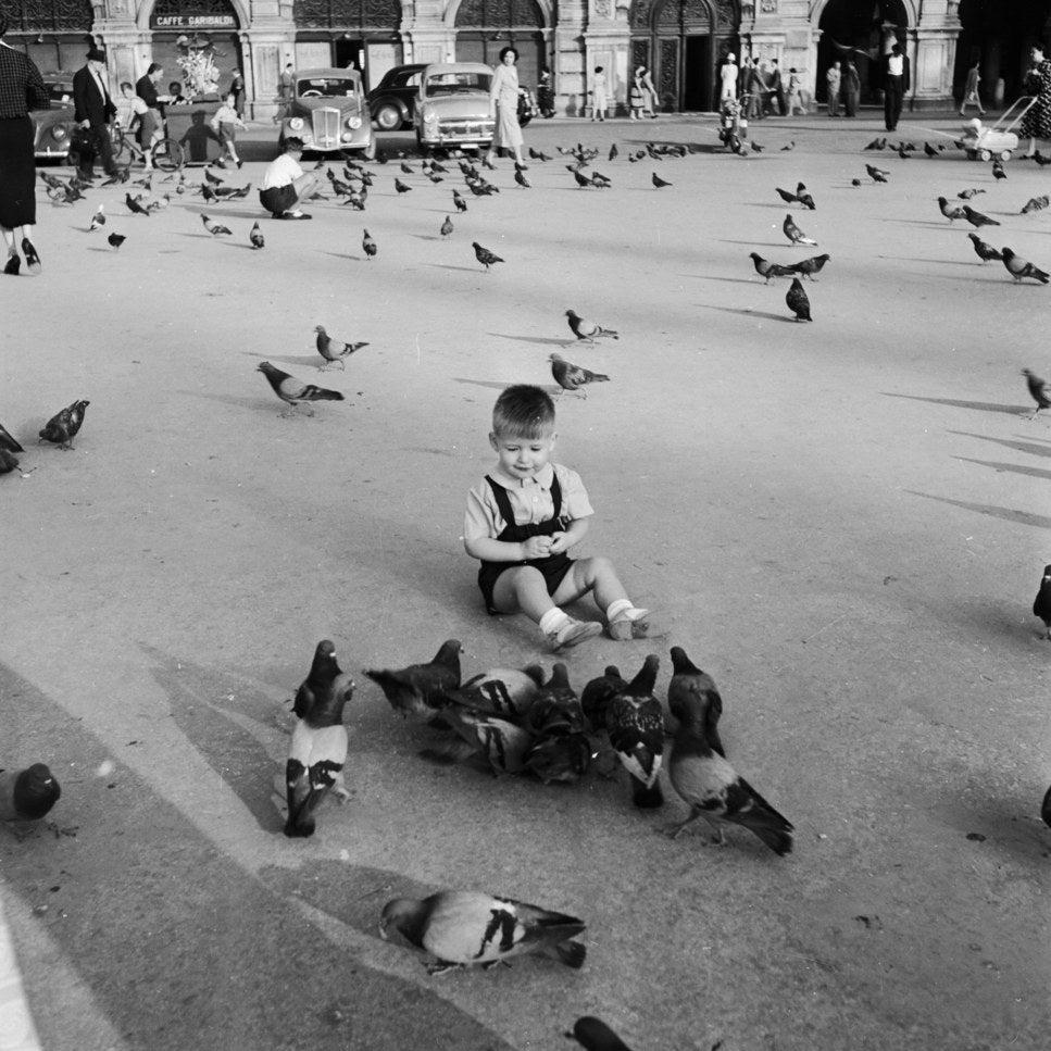 Un petit garçon s'amuse avec les pigeons de la Piazza del Unita à Triesta. Vers 1950.