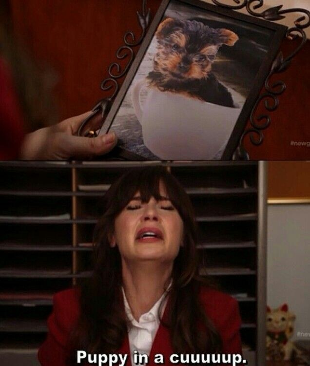"""28 """"New Girl"""" Quotes Guaranteed To Make You Laugh Every Time"""