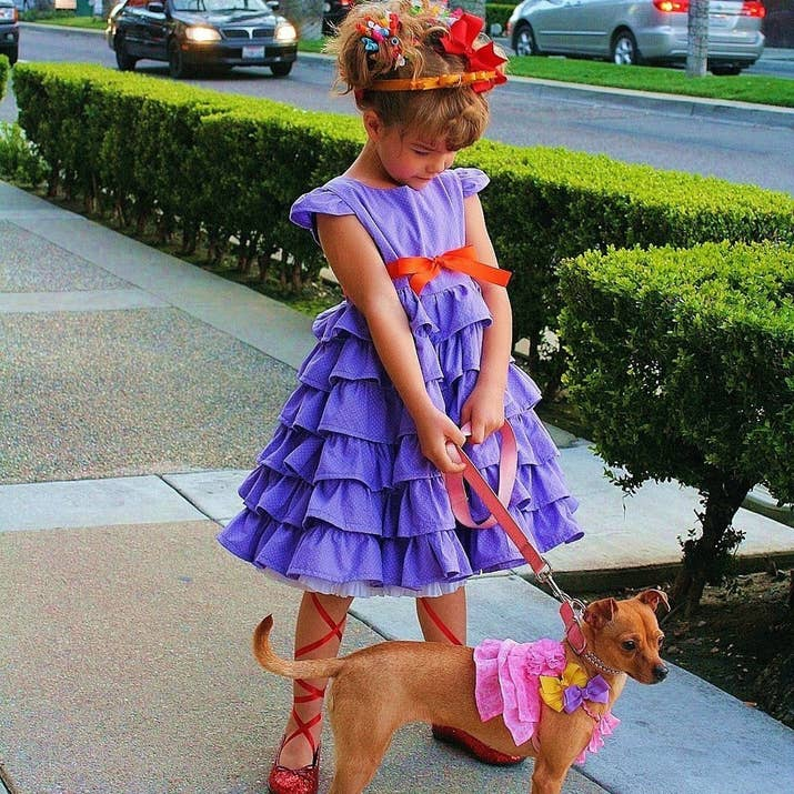 49 halloween costumes all book lovers will appreciate nancy from jane oconnor and robin preiss glassers fancy nancy get the costume solutioingenieria Images