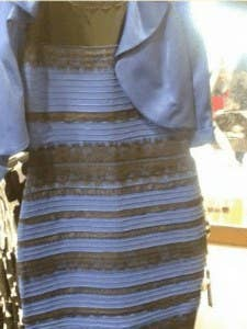 """As one of the biggest controversies of the year, this will no doubt be a popular costume. Many blue/black copies of the original dress have popped up all over the internet, but I suggest grabbing a friend and tracking down one of the rare white/gold version.Or, you can just buy the """"sexy costume"""" version."""