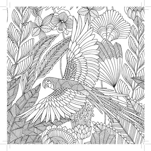 printable fish coloring pages colour with images of - Tropical Coloring Pages Printable