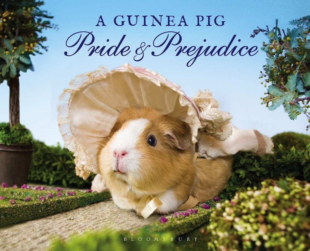 here s what happens when you combine pride and prejudice yep you guessed it a pig pride prejudice this upcoming book due out in illustrates austen s famous words photographs of real