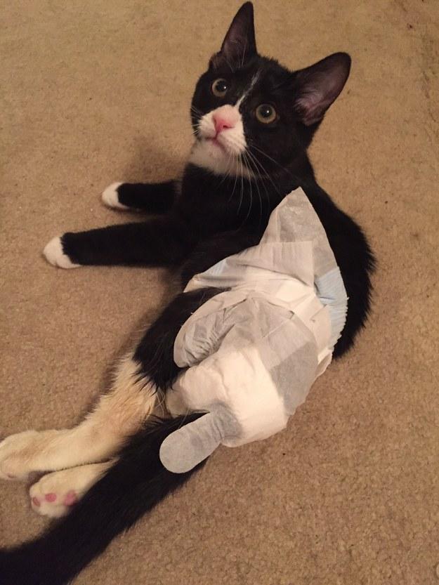 His diaper