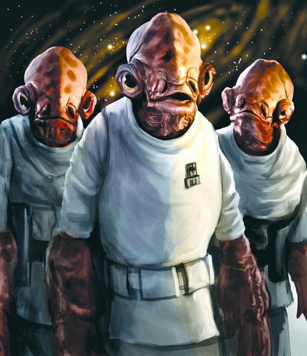 Can You Identify The Lesser-Known Species From Star Wars ?