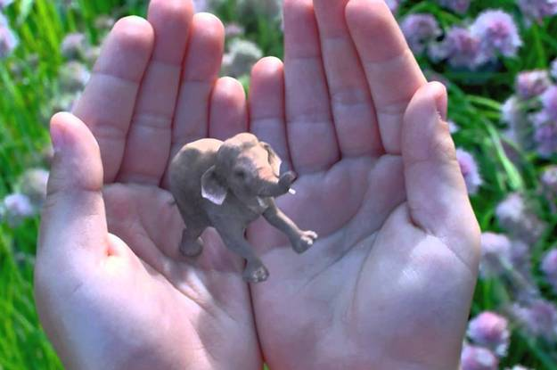 Magic Leap Shows A Glimpse Of Its Augmented Reality Tech