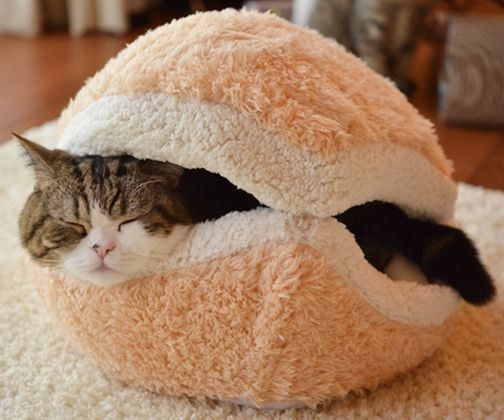 31 Fluffy Things That Ll Help You Hibernate All Winter Long