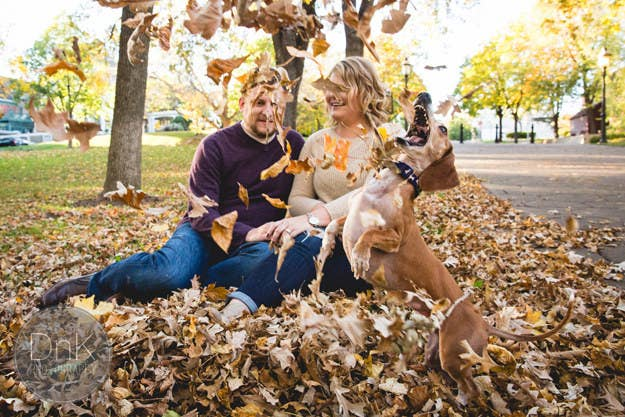 While photographers Dan and Karin Berdal of DnK Photography were setting up a shot featuring some fall leaves, Louie started frolicking like his life depended on it.