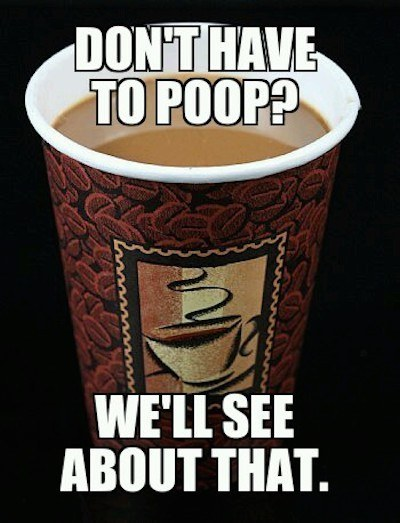 coffee makes you go to the bathroom item