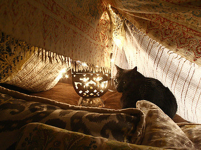 10 Drape Some Tapestries For A Cozy Kitty Cuddle Sesh