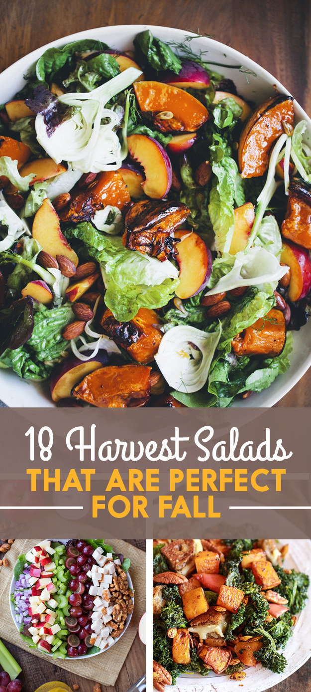 Fall pasta salad - View This Image