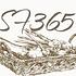 SimpleFood365