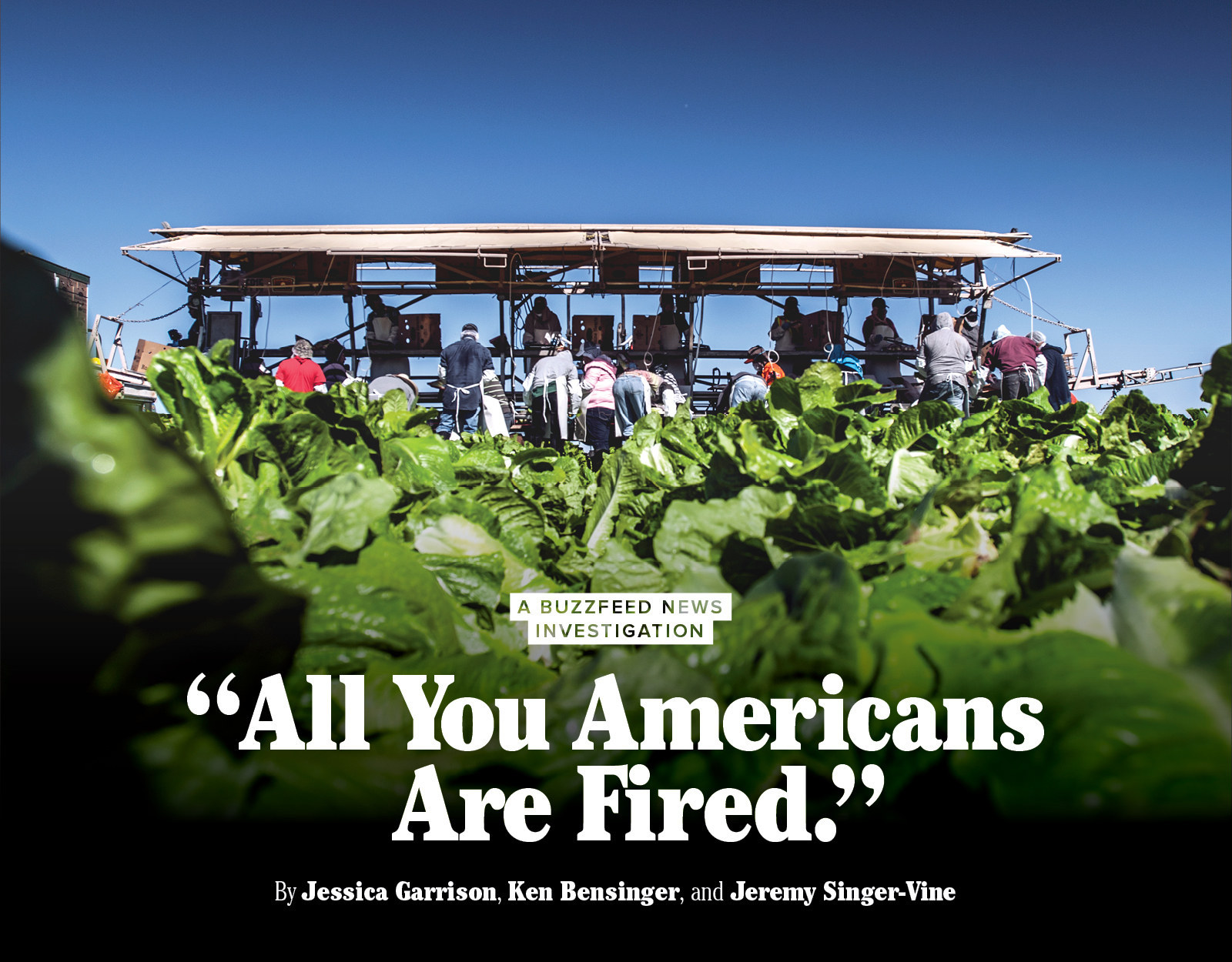 all you americans are fired news melissa wood for news