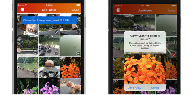 Lean (free, iOS) turns unwanted Live Photos into normal photos.