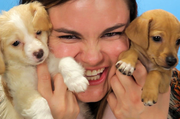 we gave drunk girls a bunch of puppies and there were lots of tears
