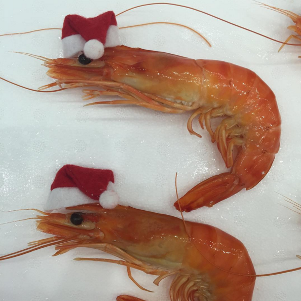 how to get rid of prawn smell in fridge