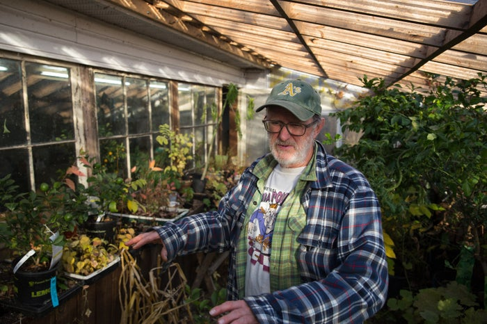 Ken Taylor is seen in his greenhouse, Nov. 4, 2015.