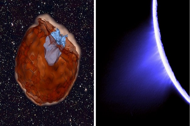 37 Science Facts We Didn't Know At The Start Of This Year