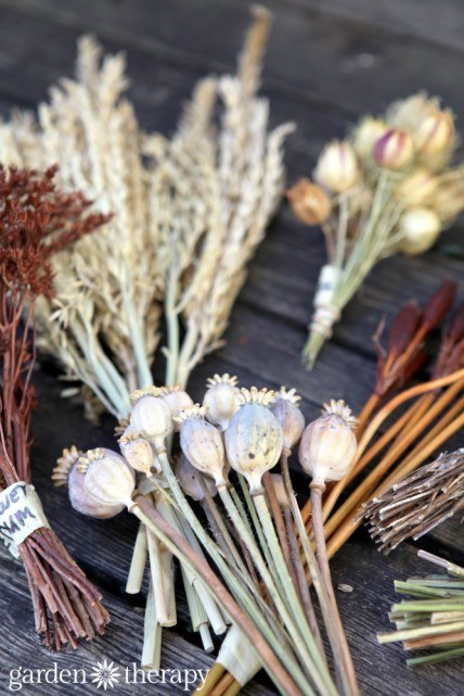 Learn how to craft with dried seeds and flowers.