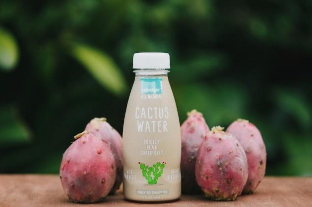 Cactus water.