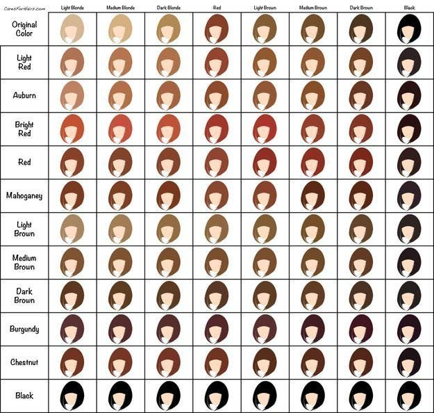 31 Charts Thatll Help You Have The Best Hair Of Your Life
