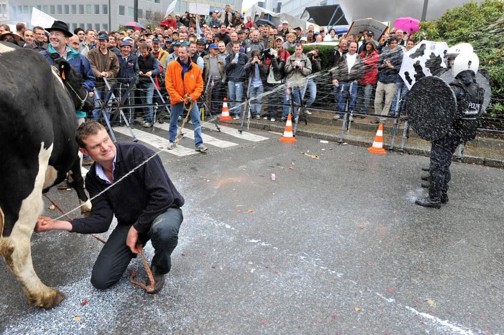 Este granjero lanzando leche a las fuerzas policiacas durante una protesta en contra de los precios de la leche, en la sede de la UE en el 2009.