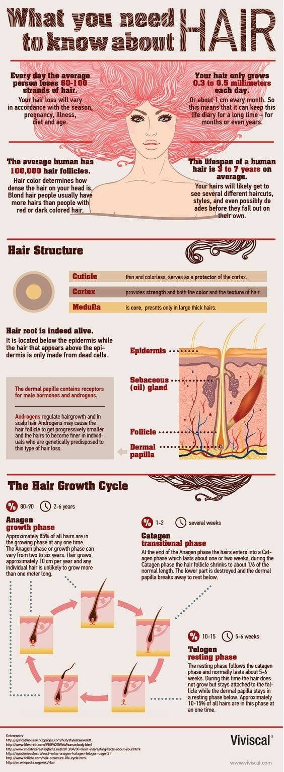 31 charts thatll help you have the best hair of your life go to hair school kinda nvjuhfo Images