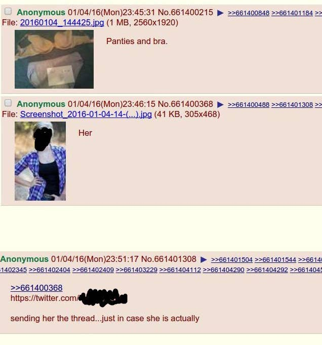 4chan Is Currently Hacking This Girl After Daring Her