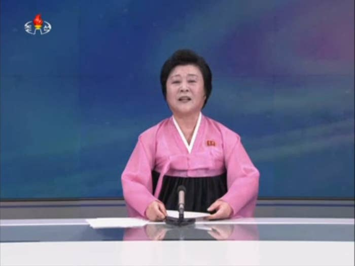 A North Korean state TV announcer reports on the alleged hydrogen bomb test.