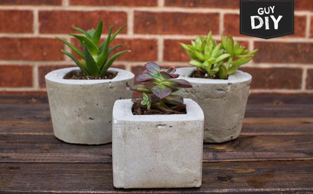 Faça seus próprios vasinhos de concreto para suculentas.