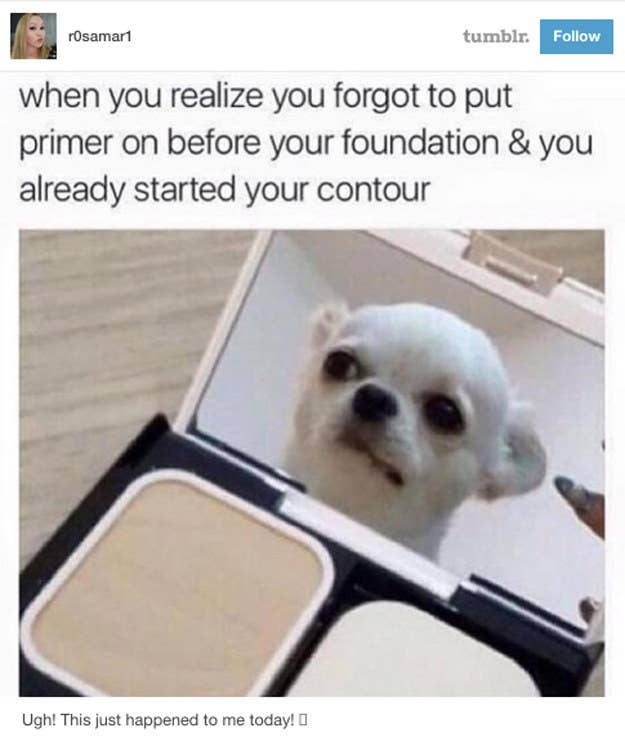Just Really Funny Tumblr Makeup Posts - 18 times tumblr told absolute hilarious truth animals